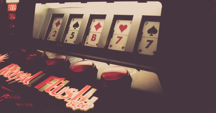Ein Privat Live Dealer Casino Studios & Tabellen Bewertung
